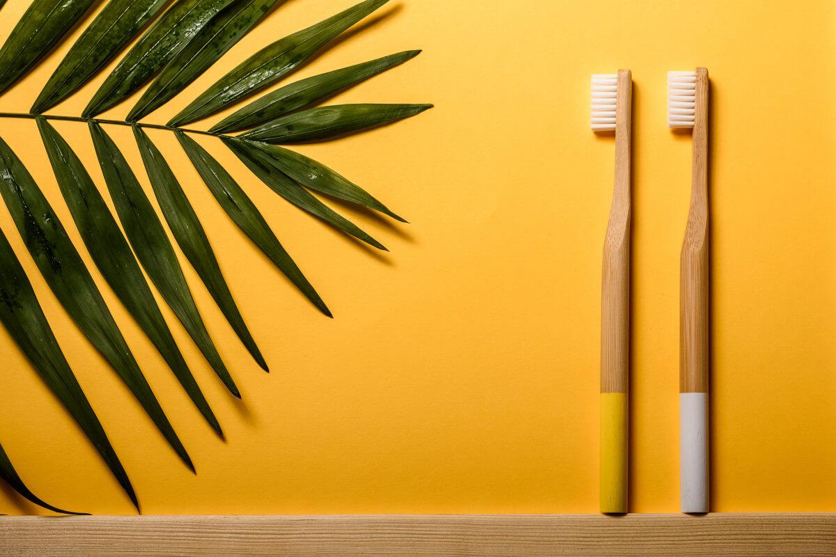 Die besten Bambuszahnbuersten fuer Nachhaltigkeit